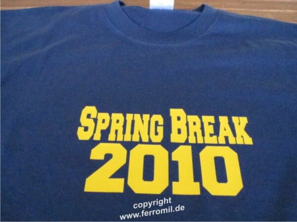 Spring Break Party 2011 Fun T-Shirt