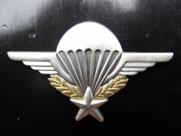 US Army Airborne Paratrooper Pin